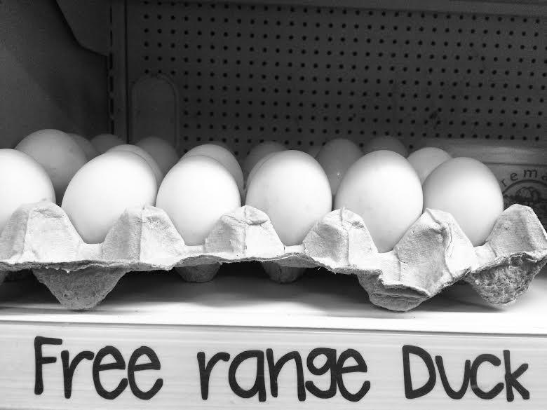 Duck Eggs - Saucisse