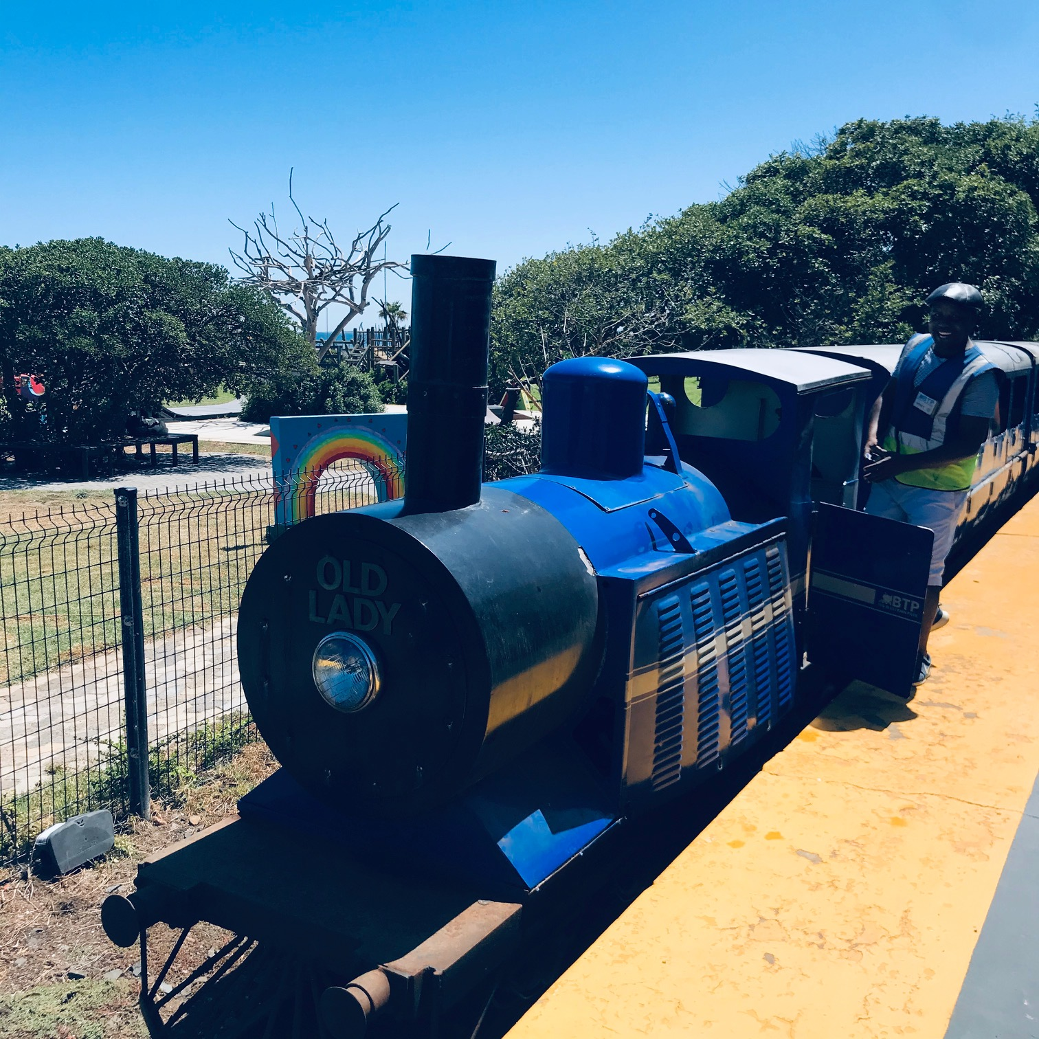 The Old Lady, Blue Train Park, Mouille Point